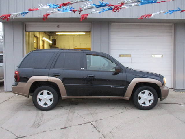 2002 Chevrolet TrailBlazer  - 1GNDT13S622420887
