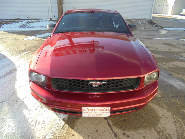 2006 Ford Mustang Standard - 1ZVFT80N265109807